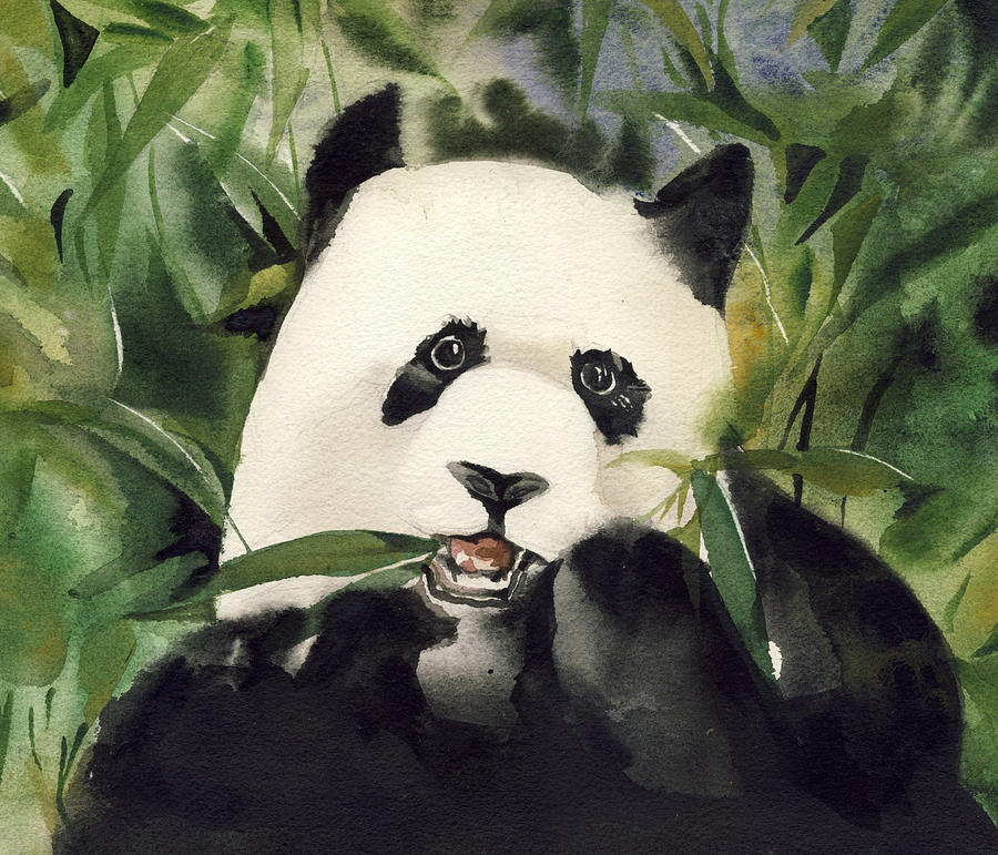 900x771 Panda Watercolor Painting By Alfred Ng