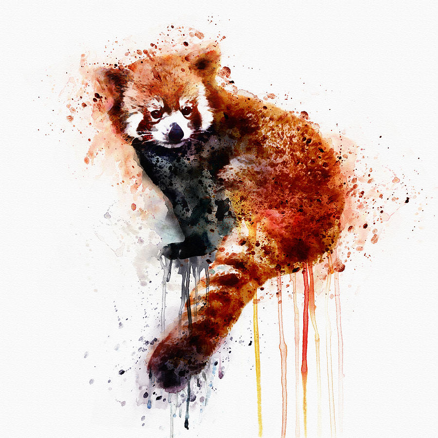 900x900 Red Panda Painting By Marian Voicu