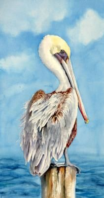 Pelican Watercolor Painting