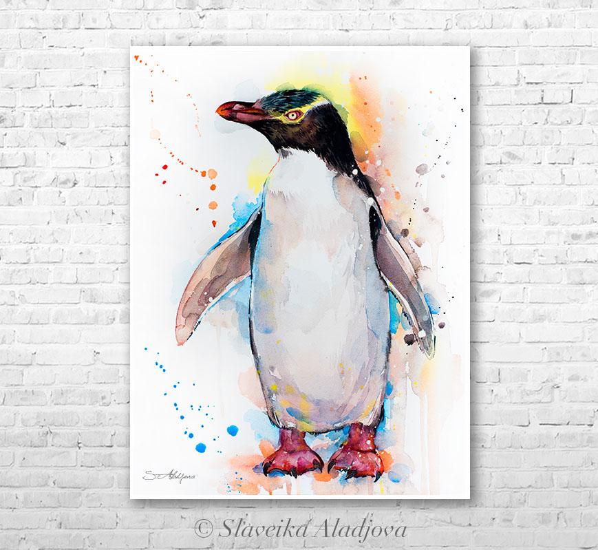 869x799 Yellow Eyed Penguin Watercolor By Slaveika Aladjova On Behance