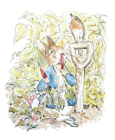 453x550 Peter Rabbit Watercolor Posters By Debramarie Redbubble