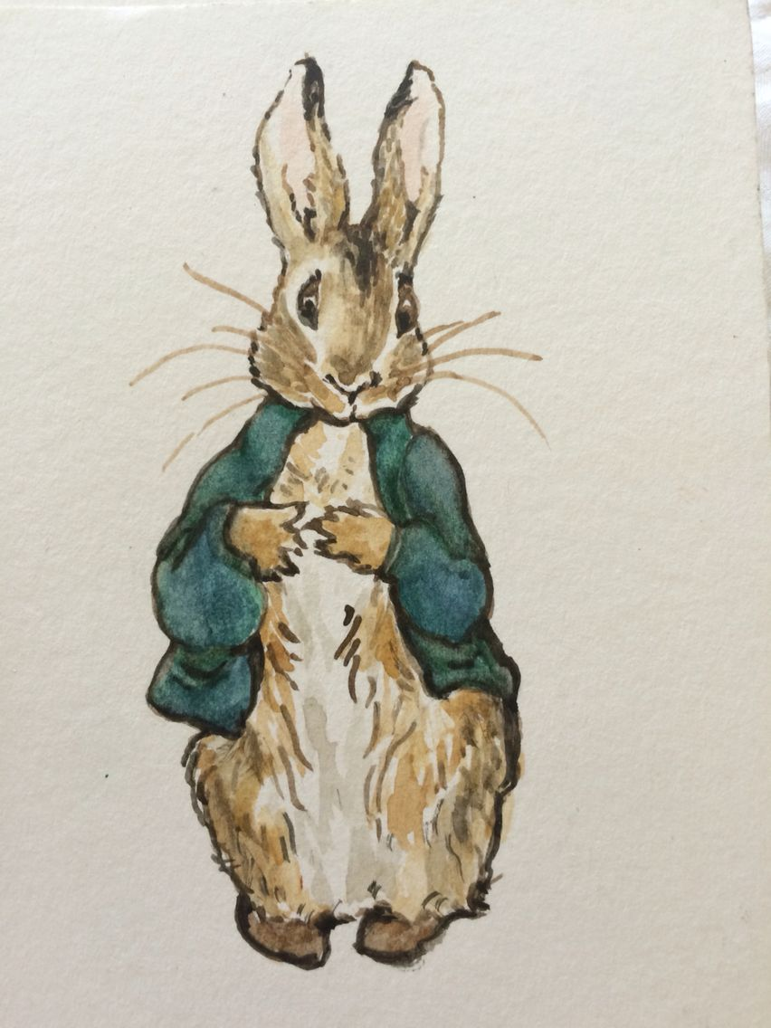 852x1136 Peter Rabbit Watercolor Peter Rabbit And Watercolor