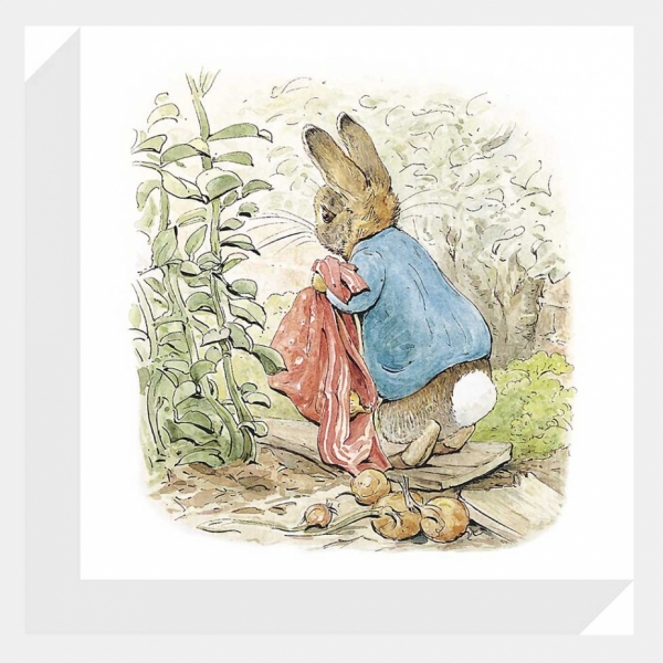 600x600 Peter Rabbit Adventures 2 Canvas