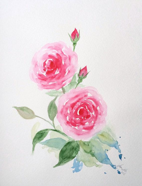 570x747 Original Watercolor Roses, Pink Roses Painting 9x12, Pink Rose