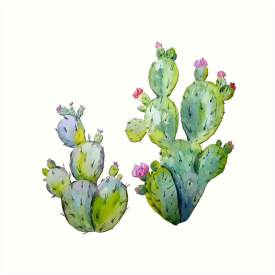 550x550 Blooming Watercolor Prickly Pear Cactus Art Prints By Elaine