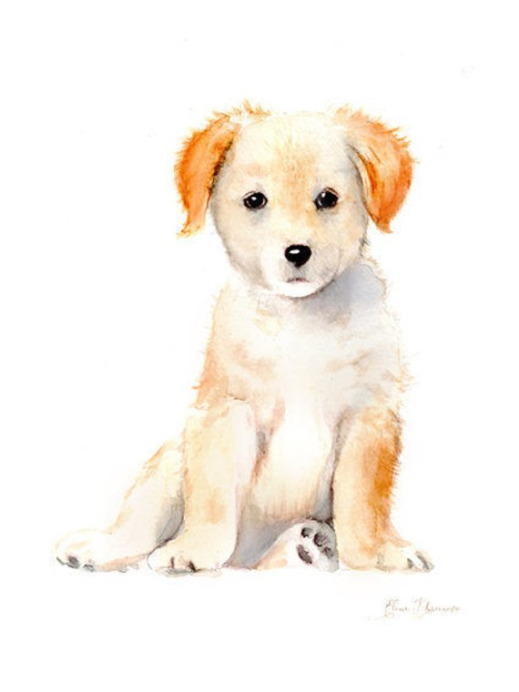 570x760 Watercolor Puppy Print Labrador Puppy Dog Art Handmade Etsy