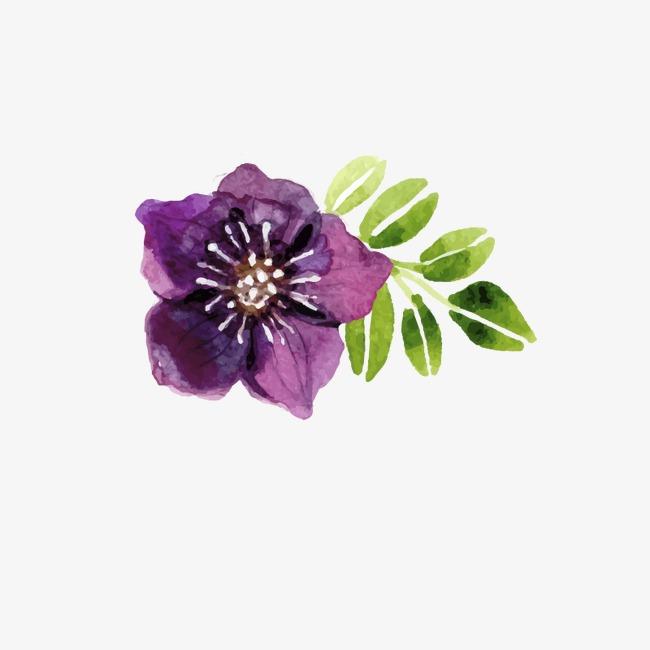 650x650 Purple Watercolor Flowers, Watercolor Flower, Purple Flower, Hand