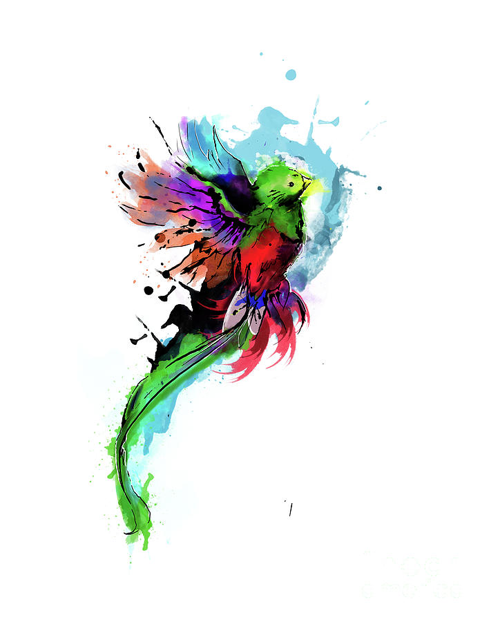 708x900 Watercolor Quetzal Digital Art By Diego Robles