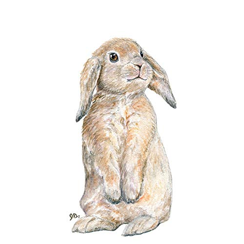 Rabbit Watercolor