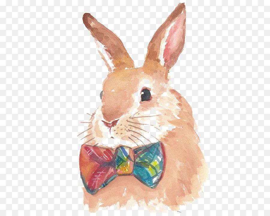 900x720 Hare Bunnies Amp Rabbits Watercolor Painting Drawing