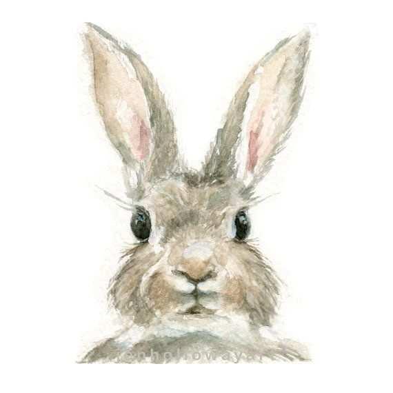 570x570 Rabbit Painting Elegant Watercolor Rabbit Rabbit Print Bunny Print