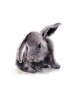 250x300 Rabbit Watercolor Paintings Fine Art America