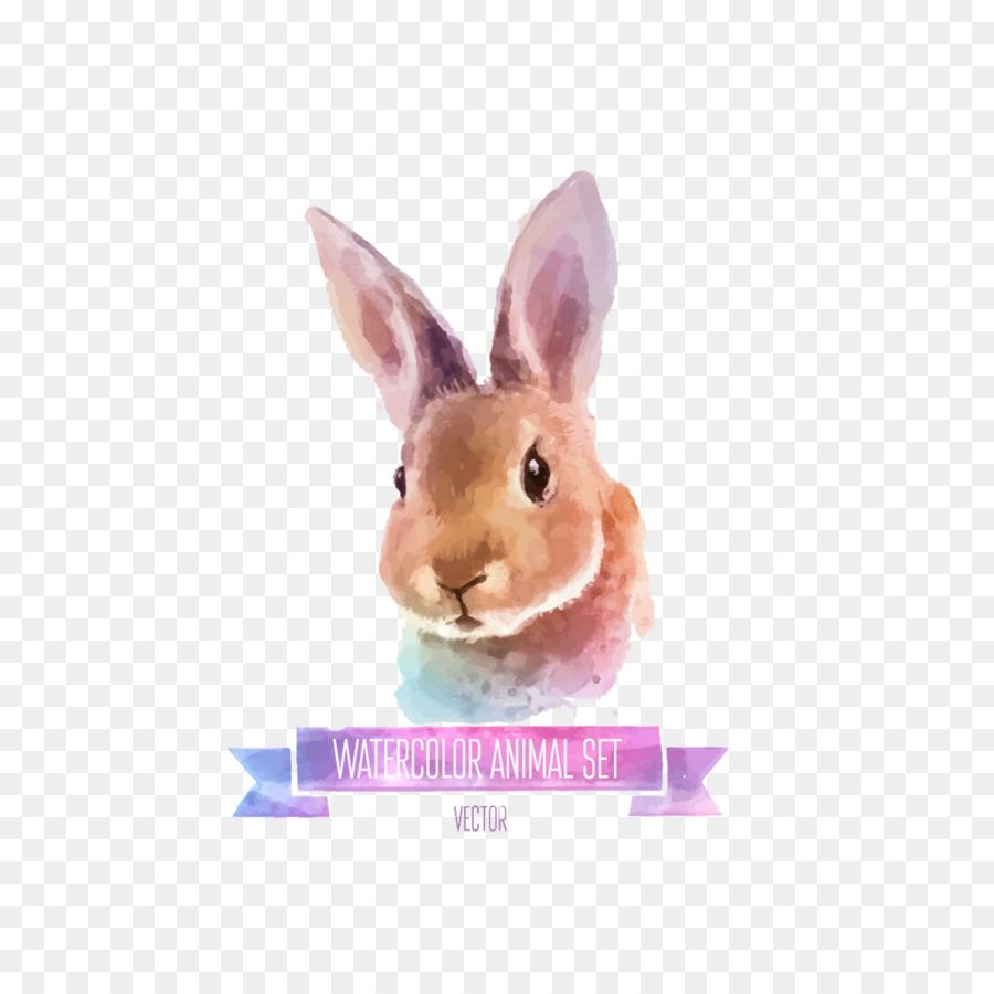 900x900 Rabbit Watercolor Painting Illustration
