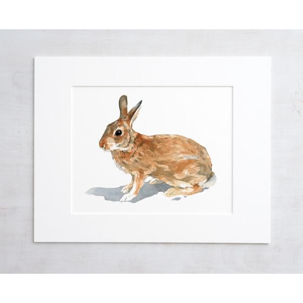 600x600 Rabbit Watercolor Print David Scheirer Watercolors