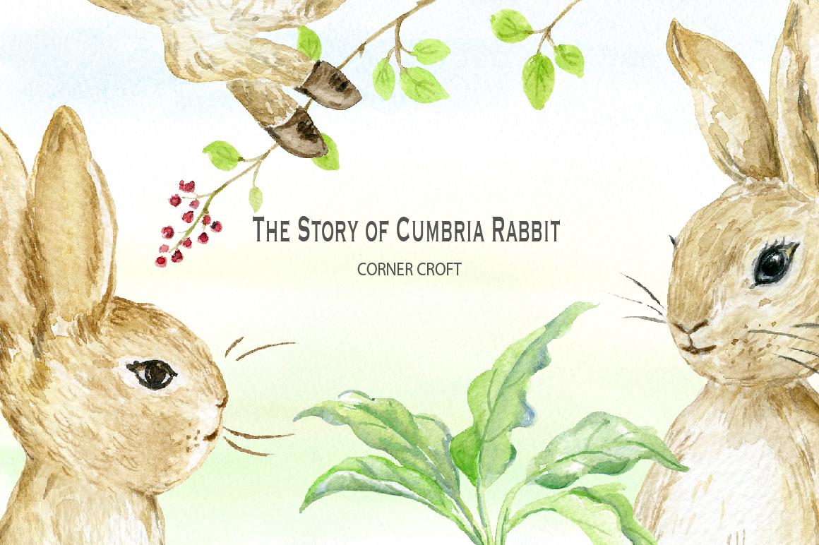 1160x772 Watercolor Cumbria Rabbit Illustration By Cornercroft