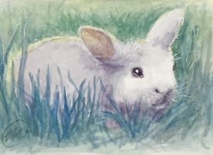 300x219 Aceo Bunny Watercolor Painting Original Rabbit Fine Art Card