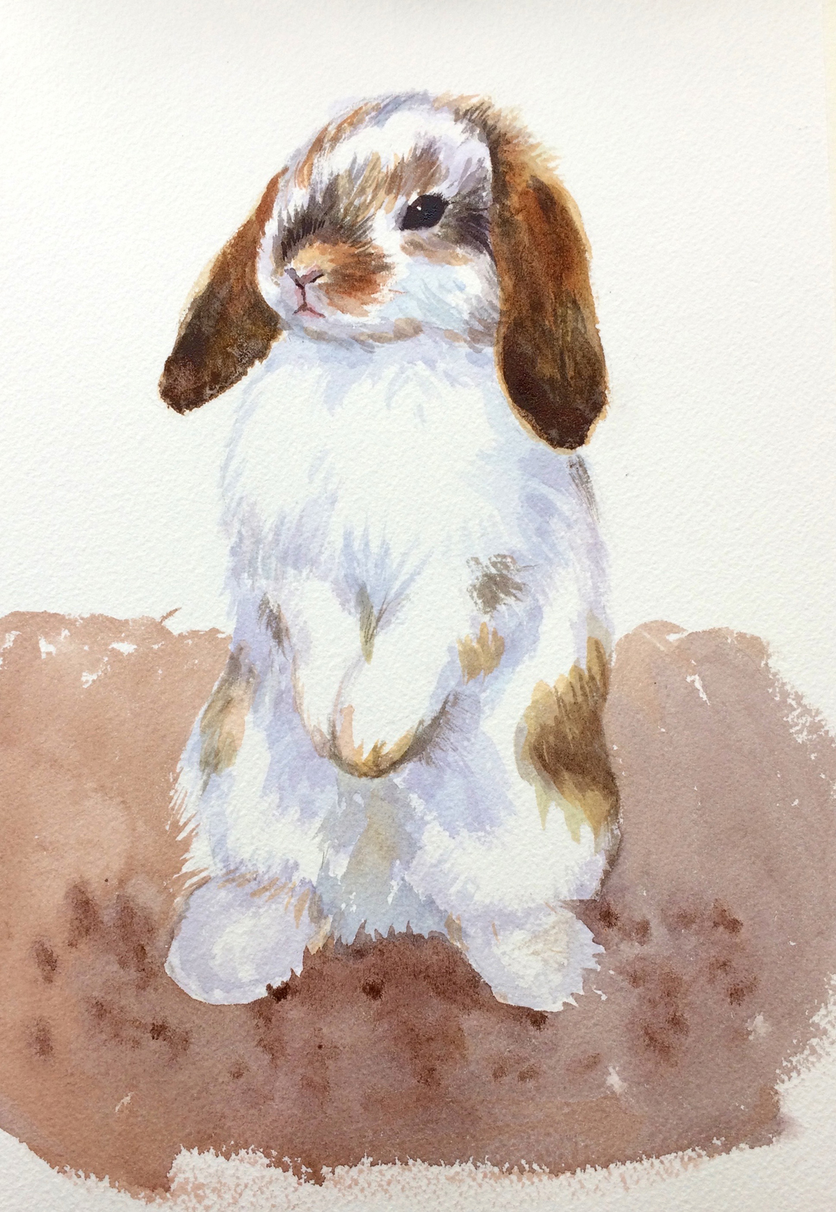 1200x1740 Painting Ideas Bunny Rabbit Made Easy, Visual Step By Step