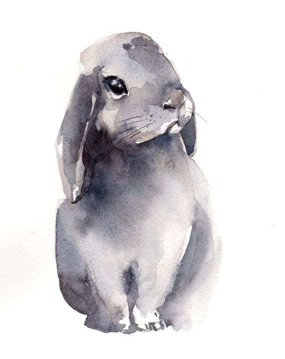 570x717 Painting Of Bunny, Original Watercolor Painting, Rabbit Painting