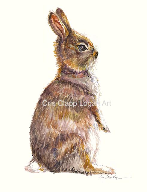 491x639 Baby Bunny Rabbit Original Watercolor Painting