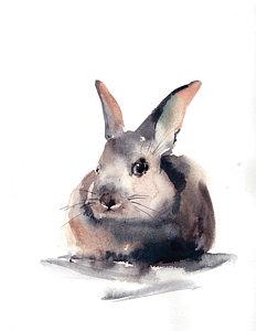 252x300 Rabbit Watercolor Paintings Fine Art America