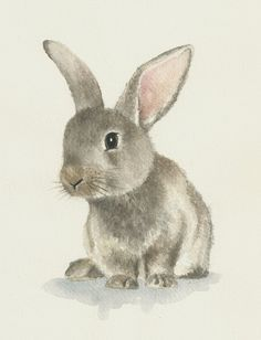236x308 Rabbit Watercolor Original Bunny Painting By Ddrawings On Etsy