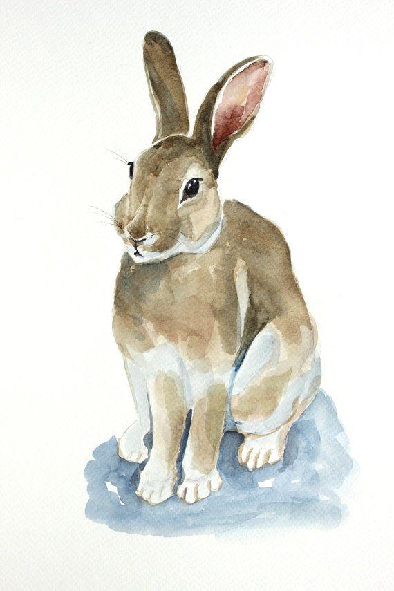 570x855 Rabbit Original Watercolor Painting Rabbit By Paintingbyzofial