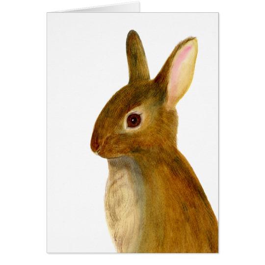 540x540 Baby Rabbit Watercolor Painting Wildlife Artwork Zazzle.co.uk