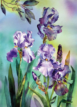 250x348 How To Paint Flowers Using Wet In Wet Watercolour Paint