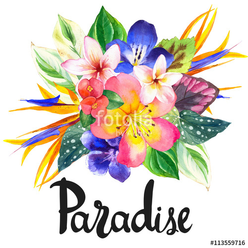 500x500 Illustration With Realistic Watercolor Flowers. Paradise. Stock