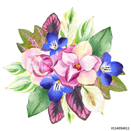 500x500 Illustrations With Realistic Watercolor Flowers. Botanical