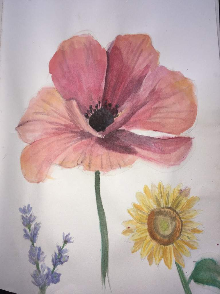 768x1024 Realistic Watercolor Flowers Amino