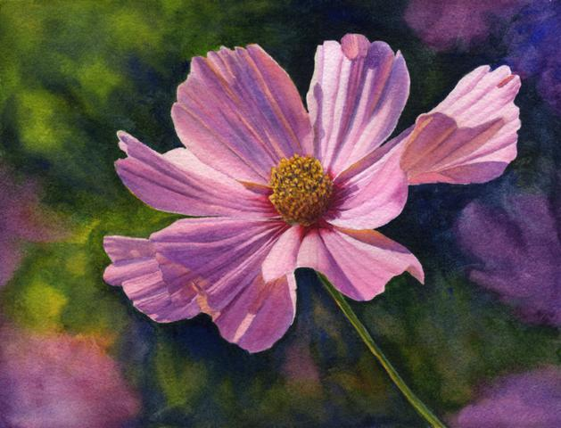 629x480 Watercolor Paintings By Cathy Hillegas