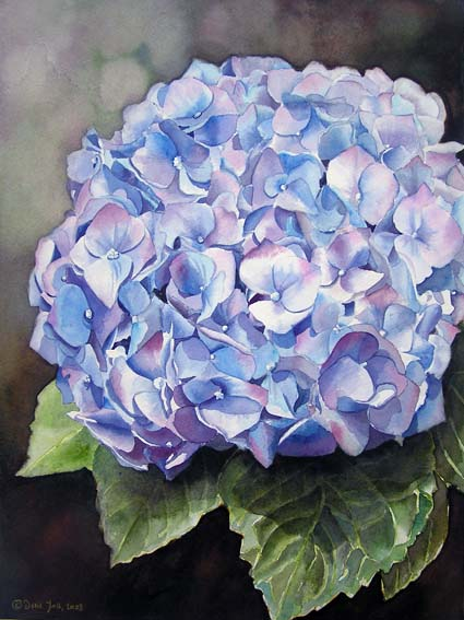 425x567 Blue Hydrangea Realistic Watercolor Flower Painting, Realistisches