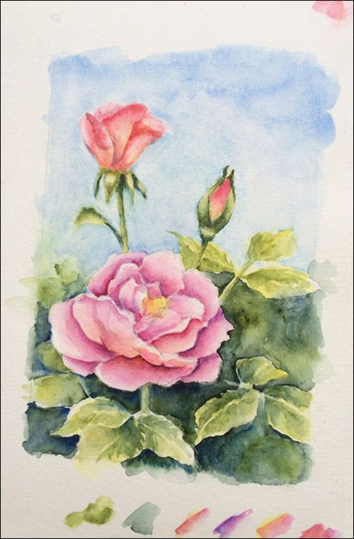 500x761 How To Paint Realistic Watercolor Roses Tutorial.... 5 Wash Glaze