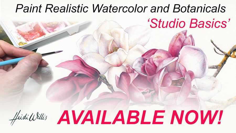 900x506 Online Watercolor And Botanical Painting Tutorial ~ Studio Basics