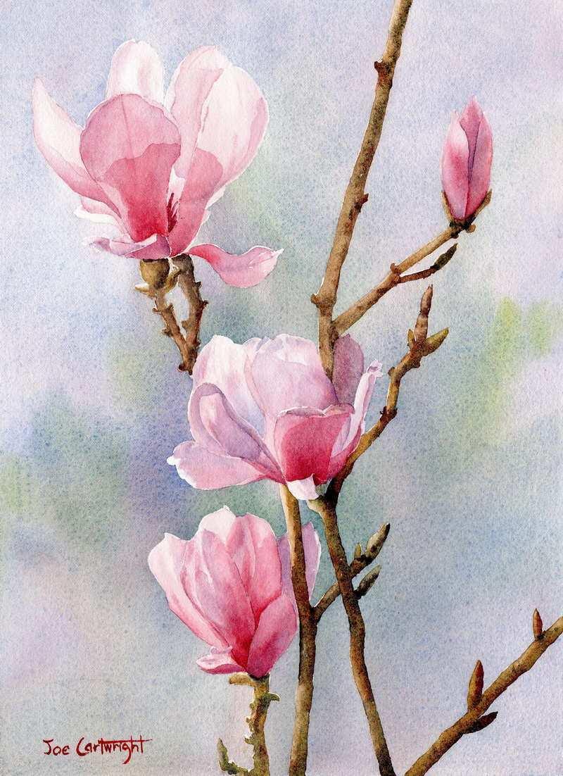 800x1102 Simple Watercolor Painting Elegant Watercolor Paintings By Joe