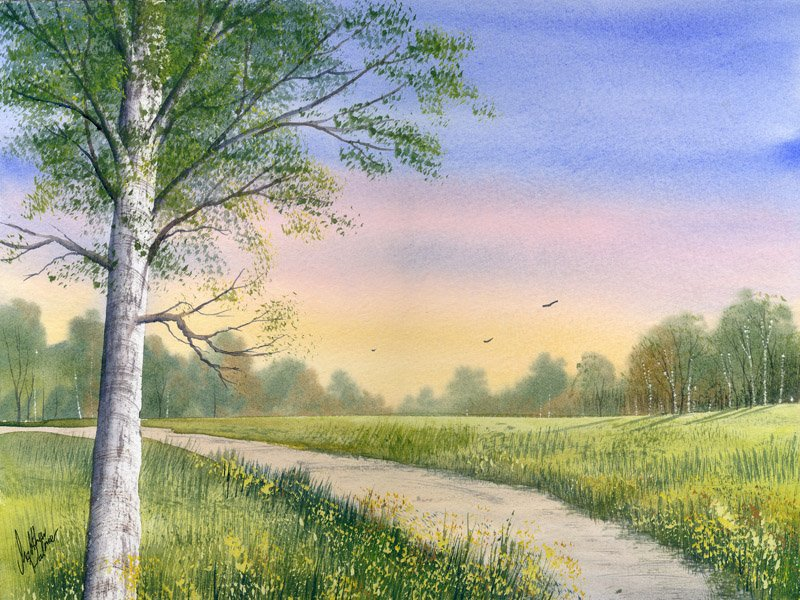 800x600 Watercolour Tutorial Paint A Meadow With Realistic Birch Trees