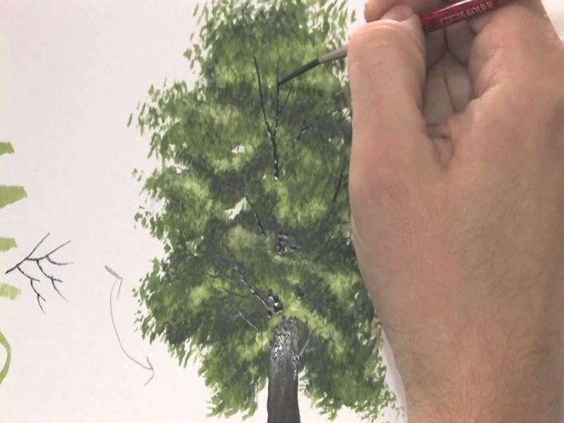 800x600 Watercolour Tutorial Painting A Realistic Tree