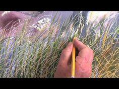 236x177 58 Best Watercolor Realism Images Watercolor Art