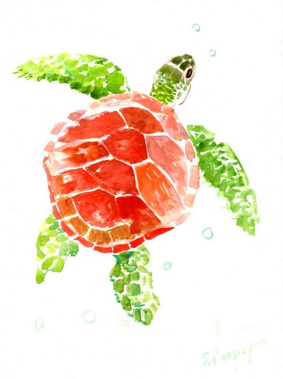 570x765 Red Green Sea Turtle Painting, 12 X 9 In, Sea Animal Art, Animal