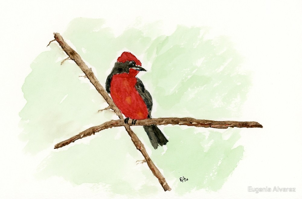 Red Bird Watercolor