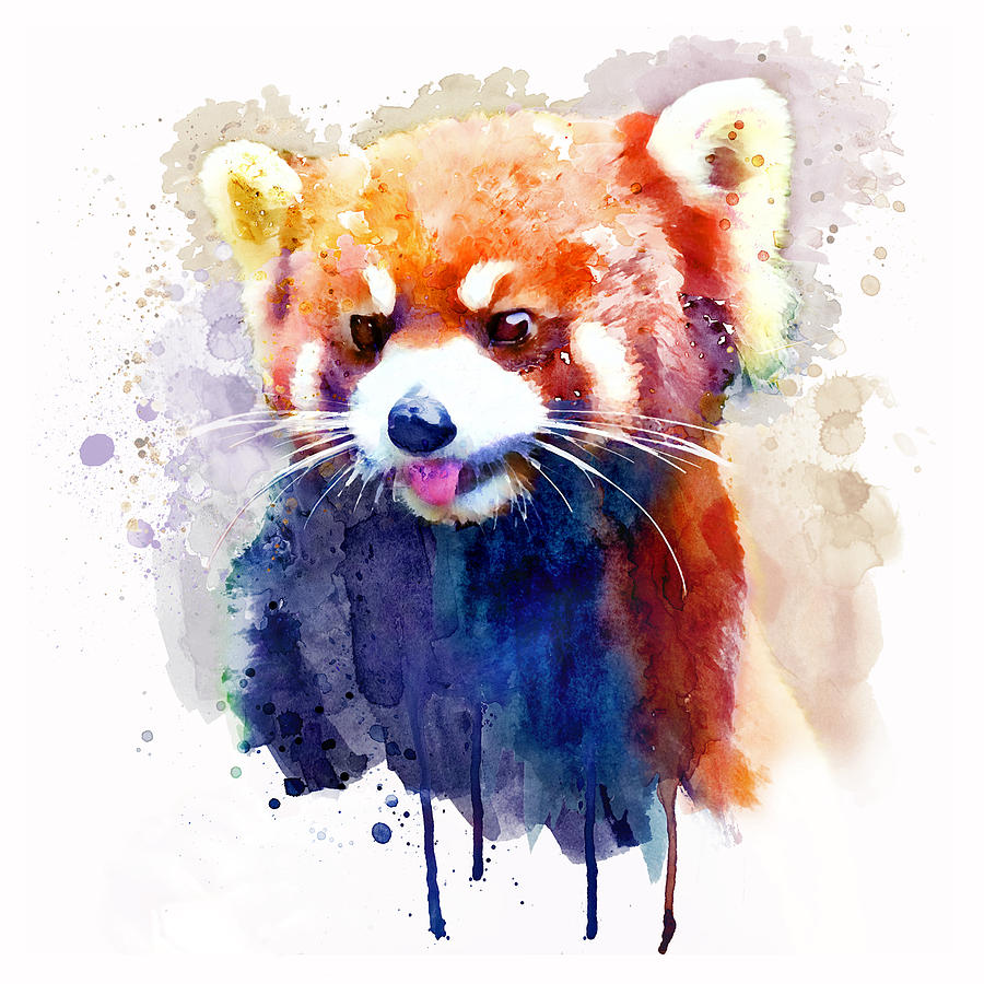 900x900 Red Panda Portrait Painting By Marian Voicu