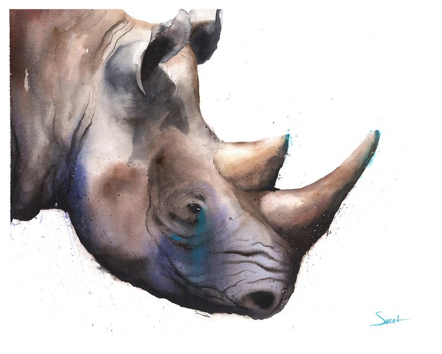 900x720 Black Rhino Watercolor Print Watercolor Animal Paintings