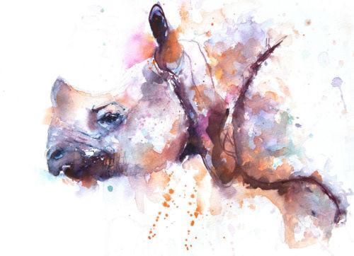 500x362 Jen Buckley Signed Limited Editon Print Of My Original Rhino Watercolo