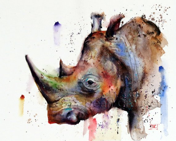570x456 Rhino Watercolor Print Wildlife Art By Dean Crouser Etsy