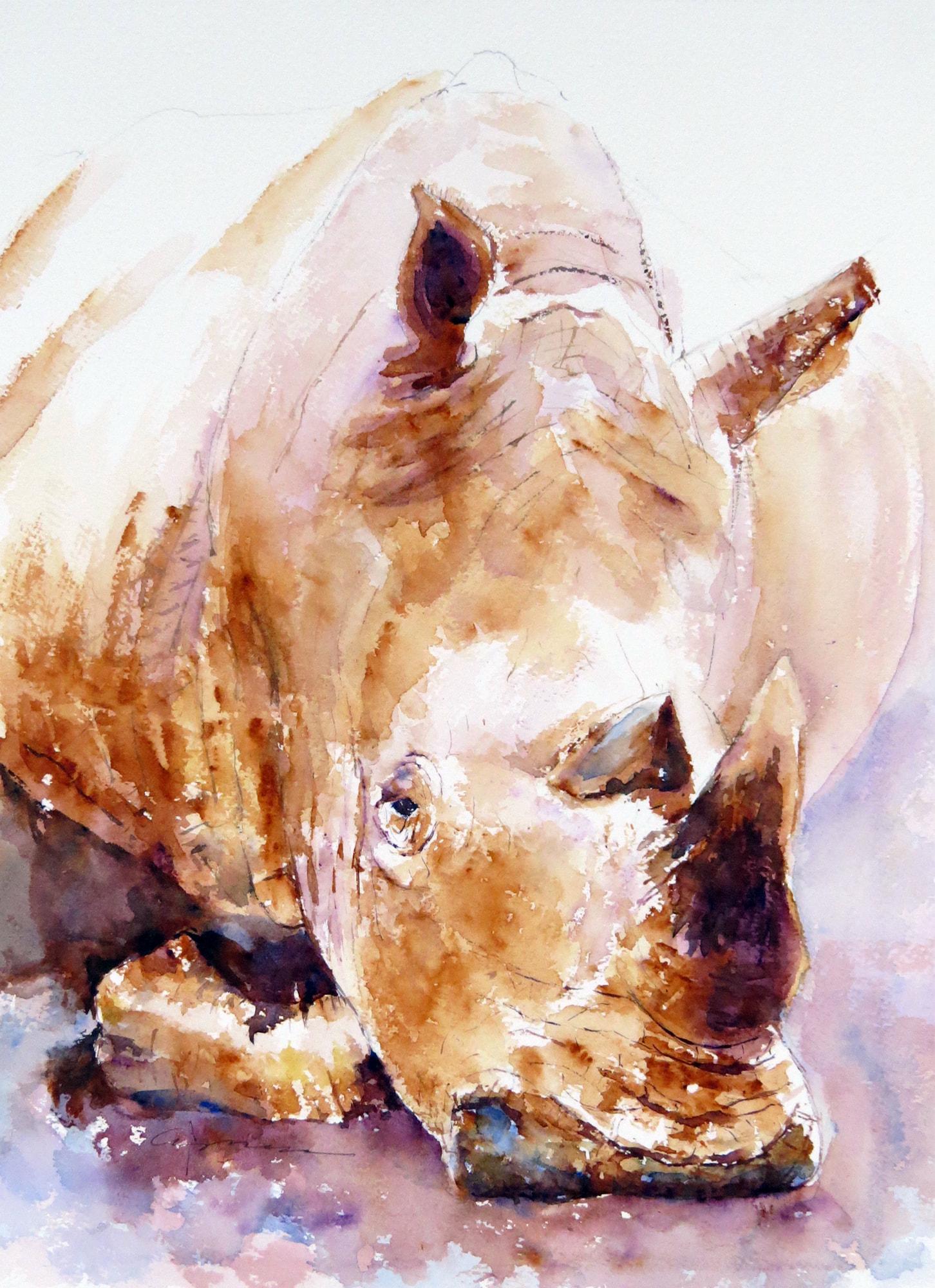 1452x2000 Rhino Watercolor Painting