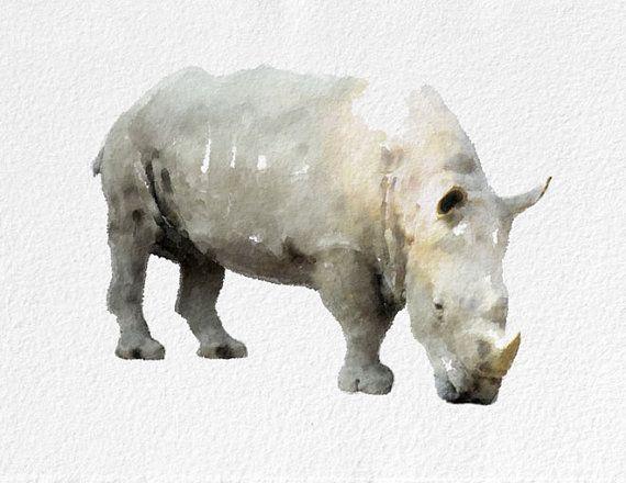 570x440 Rhino Watercolor By Novosadwatercolors Home Furniture Amp Decor