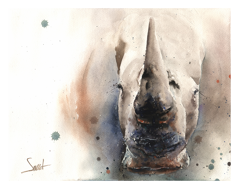 820x650 White Rhino Watercolor Print Watercolor Animal Paintings