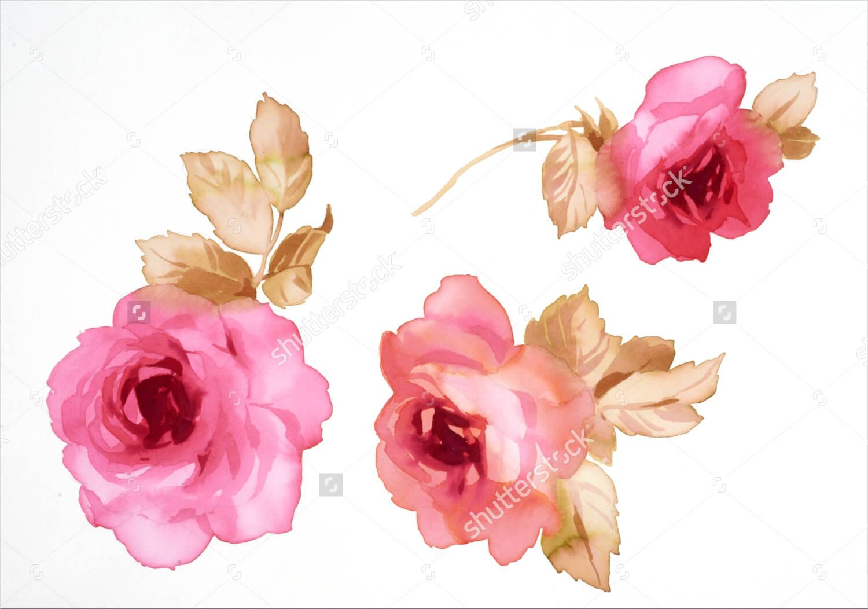 Rose Watercolor Painting