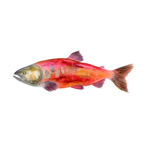 500x500 Sockeye Salmon Watercolor, Nautical Animal Nursery
